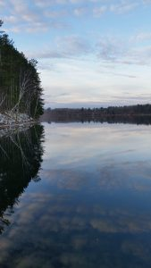 randydegerness-cloud-reflection-in-lake-portrait-nov-30th